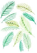[일러스트] 여름 수채화 - 열대나뭇잎 02