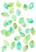 [일러스트] 여름 수채화 - 나뭇잎