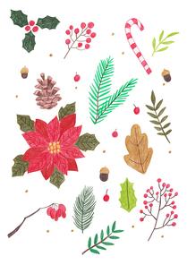 겨울 오브젝트 색연필 드로잉 09