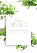 spring_041