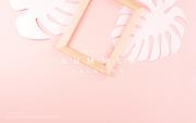종이 야자수잎, 종이컨셉의 여름배경_047