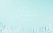 종이 야자수잎, 종이컨셉의 여름배경_006