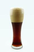 가득찬 맥주, 시원한 맥주_022