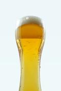 가득찬 맥주, 시원한 맥주_039