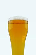 가득찬 맥주, 시원한 맥주_005