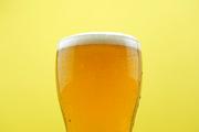 가득찬 맥주, 시원한 맥주_012