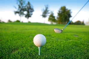 Golf tee ball club driver in green grass course horizon trees