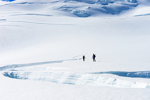 Group of people walking among snows of New Zealand Alps