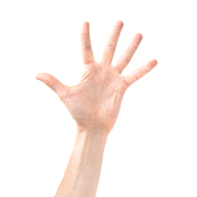 Woman open hand and five fingers isolated on white background