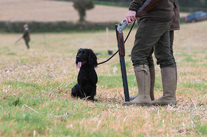 On the peg with his cocker spaniel