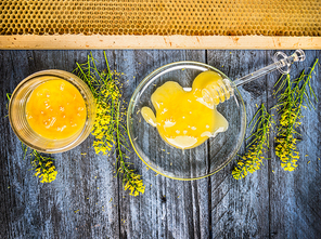 Rape honey with fresh blooming plant and honeycomb on blue rustic wooden background, top view
