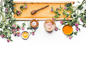 Honey in jars with dipper, honeycomb frame and wild flowers on white background, top view. Healthy  food, flat lay, border, horizontal
