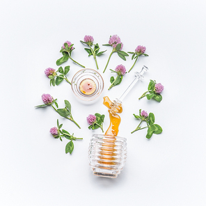 Honey dipper with honey stains from jar  with wild clover flowers on white background, top view