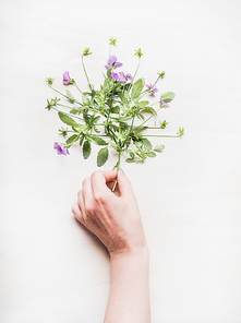 Female hand holding flowers bunch on white wooden table background, top view