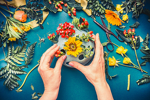 Female hand making autumn flowers  arrangements at blue florist workspace background, top view