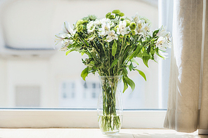 Pretty green flowers bunch in vase at window. Home interior and decoration