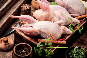 Fresh raw quail on a kitchen board and ingredients.Quail meat