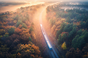 Aerial view of train in beautiful forest in fog at sunrise in autumn. Commuter train in fall. Colorful landscape with railroad, foggy trees with vibrant foliage, sunbeams. Top view. Railway station