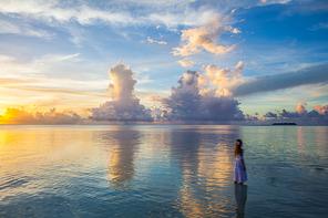 아름다운 노을 석양이 지고 있는 바닷가의 아름다운 여자의 뒷모습