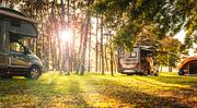아침 햇살 비치는 숲속에 주차되어 있는 캠핑카