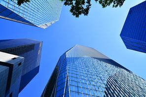 서울의 도심 한복판,금융가,증권가의 첨단의 초고층 빌딩들이 하늘을 찌르듯이 솟아있다.