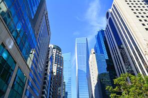 서울의 도심 한복판,금융가,증권가의 첨단의 초고층 빌딩들이 하늘을 찌르듯이 현대적 도심감각의 이미지