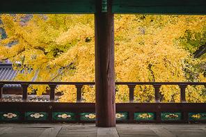 아름다운 한국의 가을