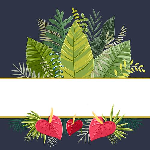 열대식물 004