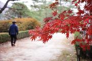 가을 풍경 036