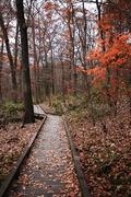 가을 풍경 048