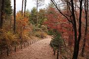 가을 풍경 075