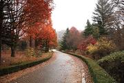 가을 풍경 085