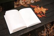 가을 풍경 053