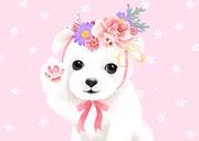 꽃동물 002