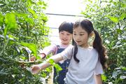 어린이농촌체험 018