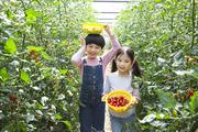 어린이농촌체험 027