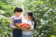 어린이농촌체험 038