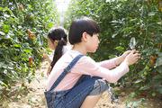 어린이농촌체험 039