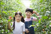 어린이농촌체험 040