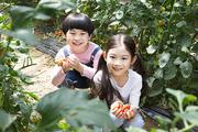 어린이농촌체험 069