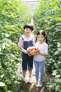 어린이농촌체험 096