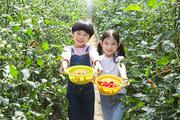 어린이농촌체험 106