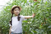 어린이농촌체험 117