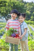 어린이농촌체험 267