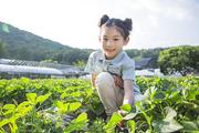 어린이농촌체험 273