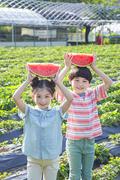 어린이농촌체험 284