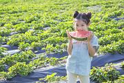 어린이농촌체험 292
