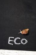 환경보호 094