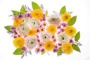 Flower 120
