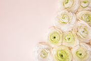 Flower 174